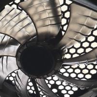 Fan-316299